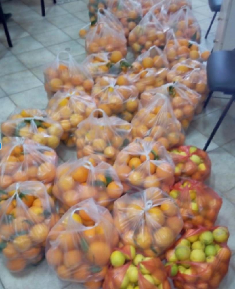 Κατάσχεση πορτοκαλιών παράνομου πλανόδιου στο Μακροχώρι
