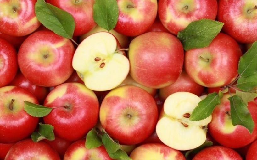 Στοιχεία του Παγκόσμιου Οργανισμού Τροφίμων - Οι 10 πρώτες χώρες παγκοσμίως στην εξαγωγή μήλων