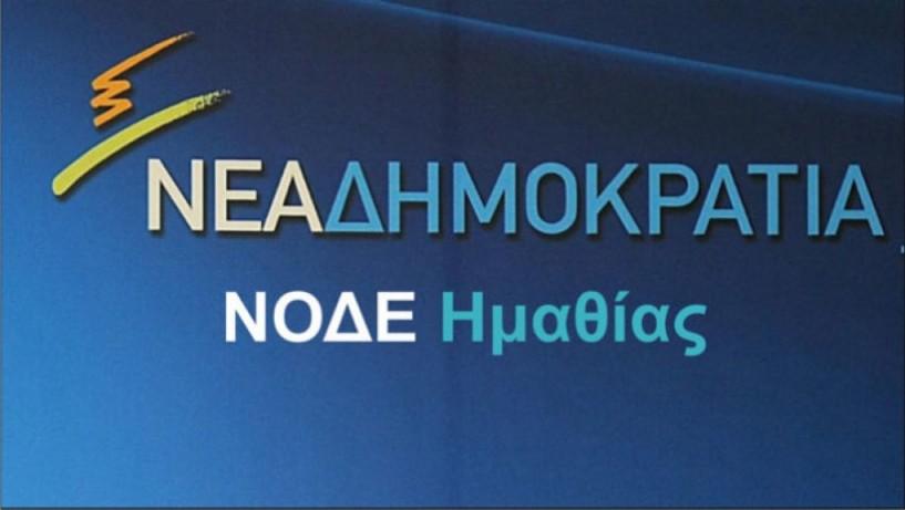 Η  ΝΟ.Δ.Ε Ν. Ημαθίας  απαντάει στην Ν.Ε.του  ΣΥΡΙΖΑ για το ροδάκινο