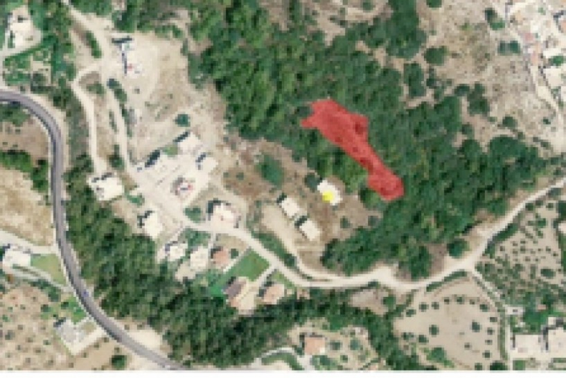 Τον κώδωνα του κινδύνου για τους δασικούς χάρτες χτυπάει η ΕΝΠΕ