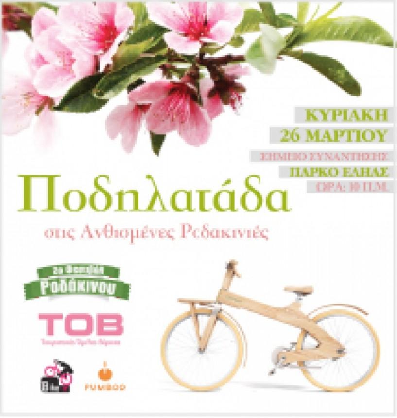 Ανοιχτή πρόσκληση του Τουριστικού Ομίλου Βέροιας -  Ποδηλατάδα στις Ανθισμένες Ροδακινιές
