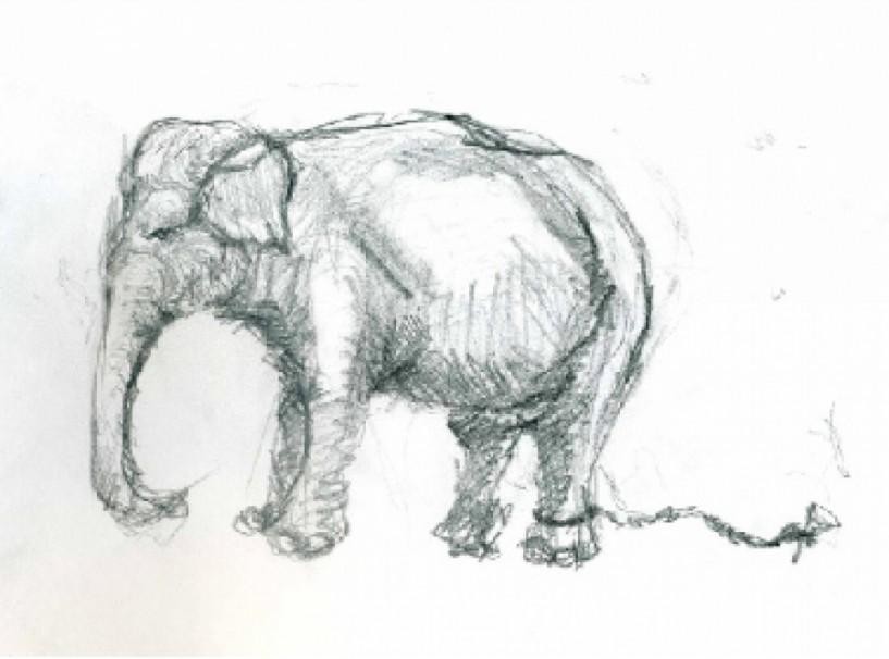 Έκφραση της Ψυχής  ως σύμμαχος της Υγείας… - «Ο αλυσοδεμένος ελέφαντας….» Της Χρύσας Μπέκα, Ψυχολόγου – ψυχοθεραπεύτριας