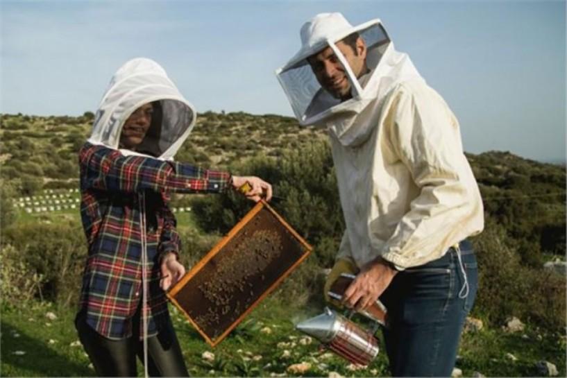 Δράσεις για μελισσοκόμους στην Ημαθία
