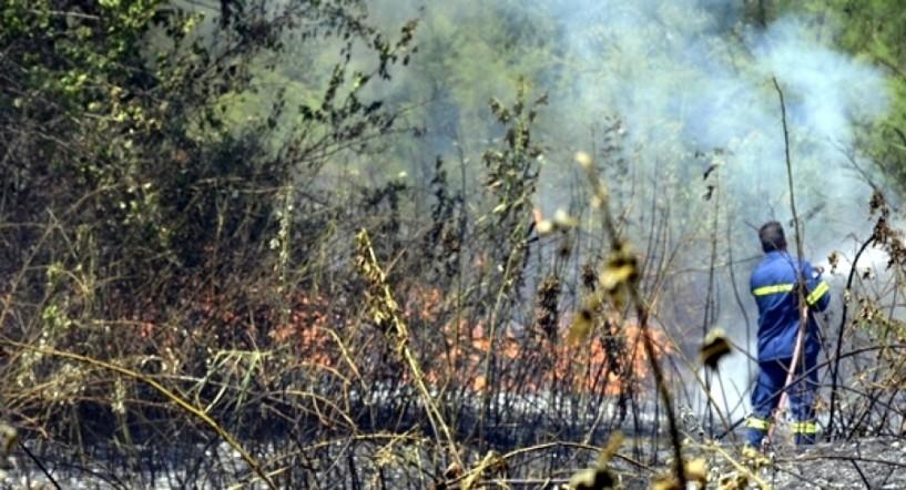 Φωτιά κατακαίει χορτολιβαδικές εκτάσεις στην περιοχή Αγίας Κυριακής Λουτρού