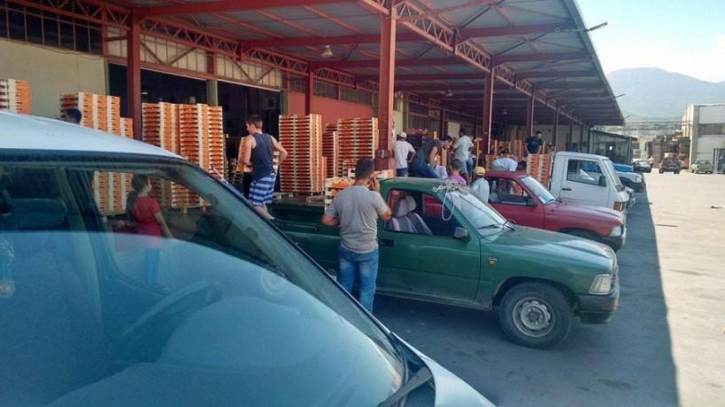 Δραματική η εικόνα στο ροδάκινο. Ανοικτά φορτία από την Ισπανία πιέζουν τις τιμές και ακυρώνουν παραγγελίες. Ανάγκη ευρωπαϊκής παρέμβασης πριν την καταστροφή