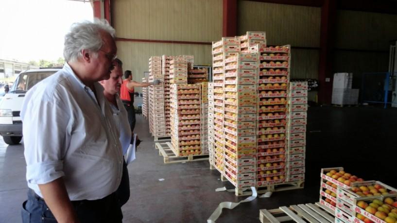 Στην Ευρωβουλή από το ΚΚΕ το θέμα των αποζημιώσεων των παραγωγών και του εμπάργκο