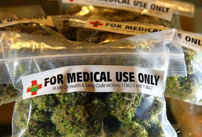Έντονο το επενδυτικό ενδιαφέρον στην Ημαθία για καλλιέργεια φαρμακευτικής κάνναβης. Δεν υπάρχει νομικό πλαίσιο