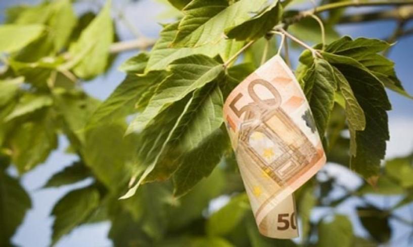 Πληρωμή αποζημιώσεων ύψους 30 εκατ. ευρώ από τον ΕΛΓΑ σε 16.348 δικαιούχους