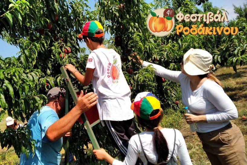 Δράσεις για παιδιά στο 4o Φεστιβάλ Ροδάκινου Βέροιας - Το πρόγραμμα των δράσεων