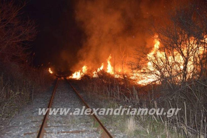 Ακινητοποιήθηκε τρένο λόγω φωτιάς στον Σιδηροδρομικό Σταθμό Αλεξάνδρειας