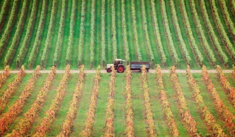 Ανοίγει ο δρόμος για την τηλεκατάρτιση  των Νέων Αγροτών