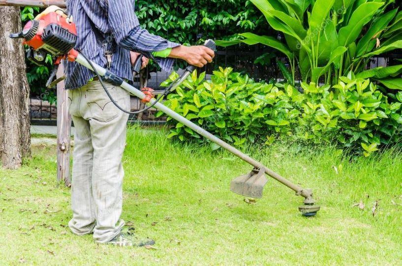 Δήμος   Νάουσας προς   ιδιοκτήτες οικοπέδων: Κόψτε την έντονη   βλάστηση στις   ιδιοκτησίες σας