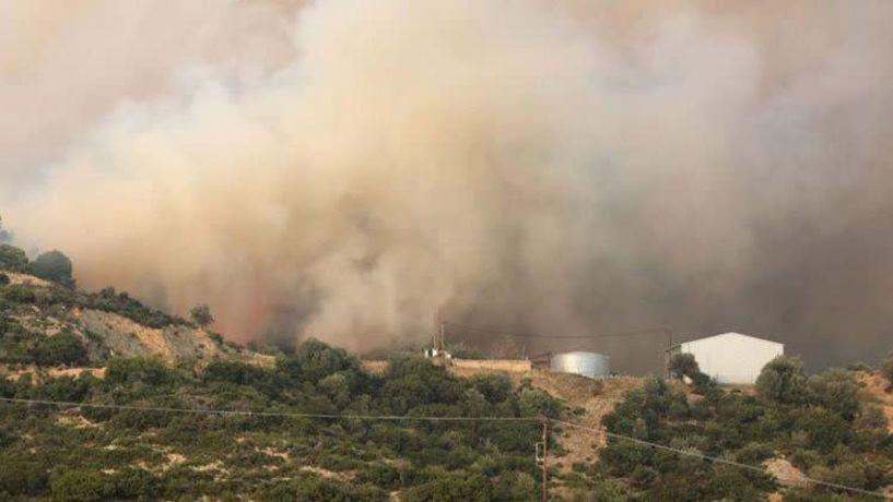 Φωτιά στο Καλαμίτσι στη Χαλκιδική