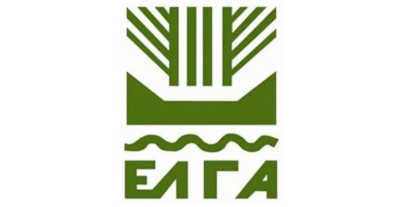 Διαπραγματεύσεις μεταξύ ΕΛΓΑ και Οργανώσεων για τις αποζημιώσεις από τη βροχόπτωση