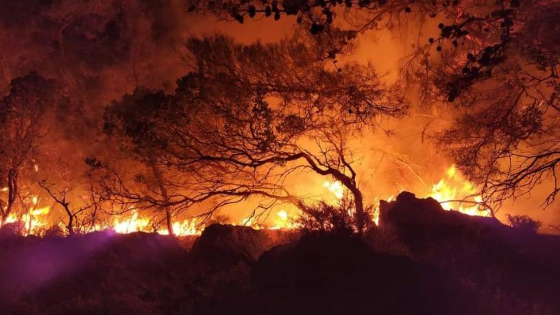 Απαγορεύονται οι μετακινήσεις σε δάση και άλση μέχρι τη Δευτέρα – Έως 10.000 ευρώ το πρόστιμο για εργασία που μπορεί να προκαλέσει πυρκαγιά