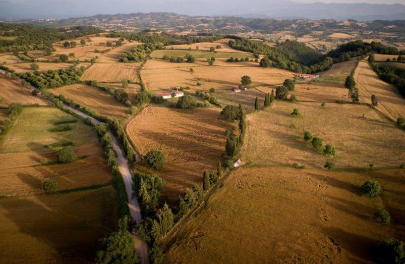 Χαρίζονται χιλιάδες στρέμματα γης σε αγρότες, άνεργους και νέους!