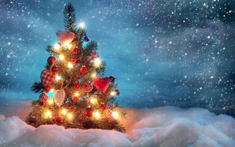 Το πρόγραμμα των Χριστουγεννιάτικων Εκδηλώσεων της Αντιδημαρχίας Πολιτισμού και του Δημοτικού Ωδείου Νάουσας