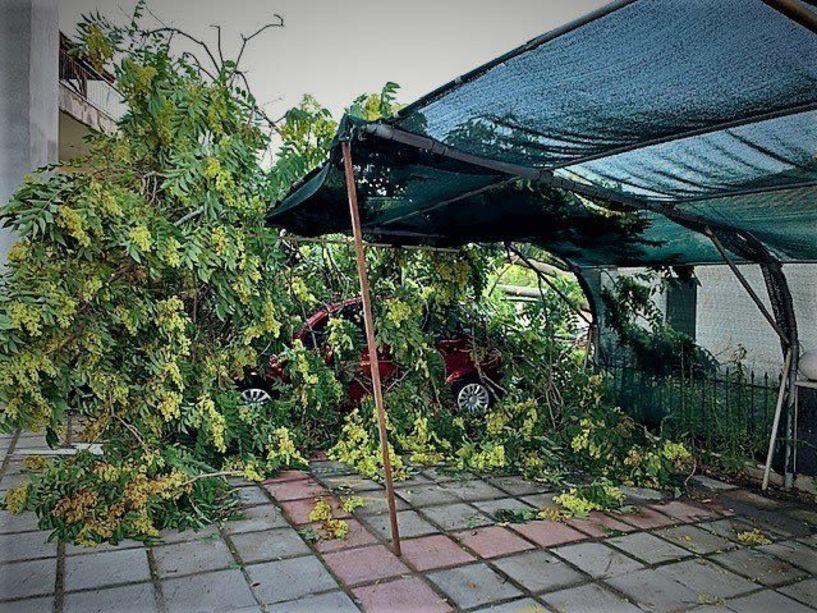Δήμος Αλεξάνδρειας: Προσπάθειες αποκατάστασης των ζημιών από την χθεσινή βροχόπτωση