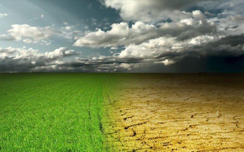 Ημερίδα για την   καινοτομία στη γεωργία, την κτηνοτροφία   και το περιβάλλον