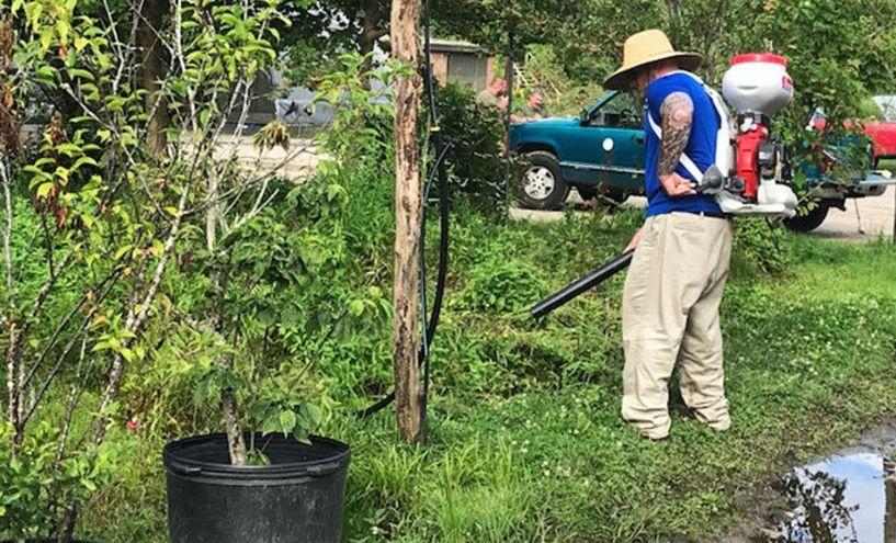 Πρόγραμμα Καταπολέμησης Κουνουπιών του Δήμου Αλεξάνδρειας
