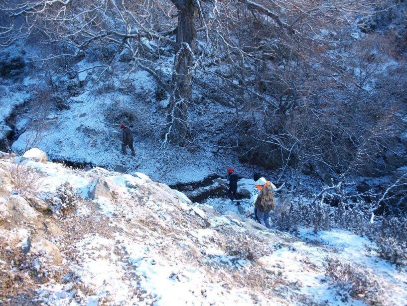 Απαγορεύεται το κυνήγι   σε περίοδο χιονοπτώσεων