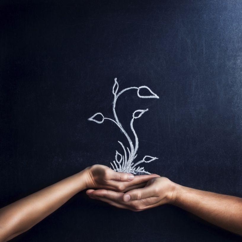 Κάλεσμα συμμετοχής σε εθελοντικό δίκτυο υποστήριξης μαθητών ειδικής αγωγής στη Νάουσα