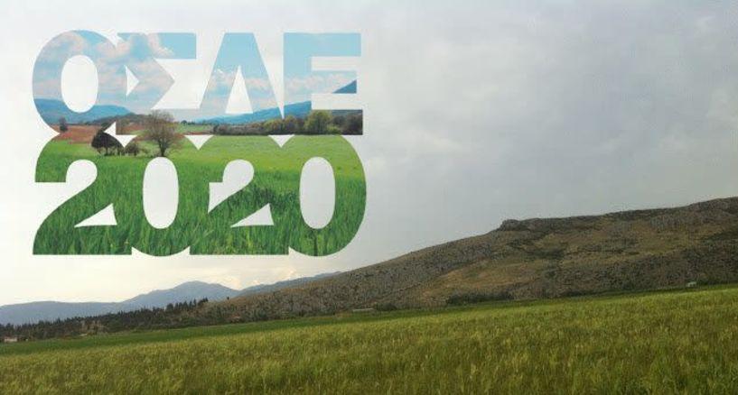 Με δήλωση ΟΣΔΕ του 2020, τελικά, η μετάκληση των αλλοδαπών εργατών γης