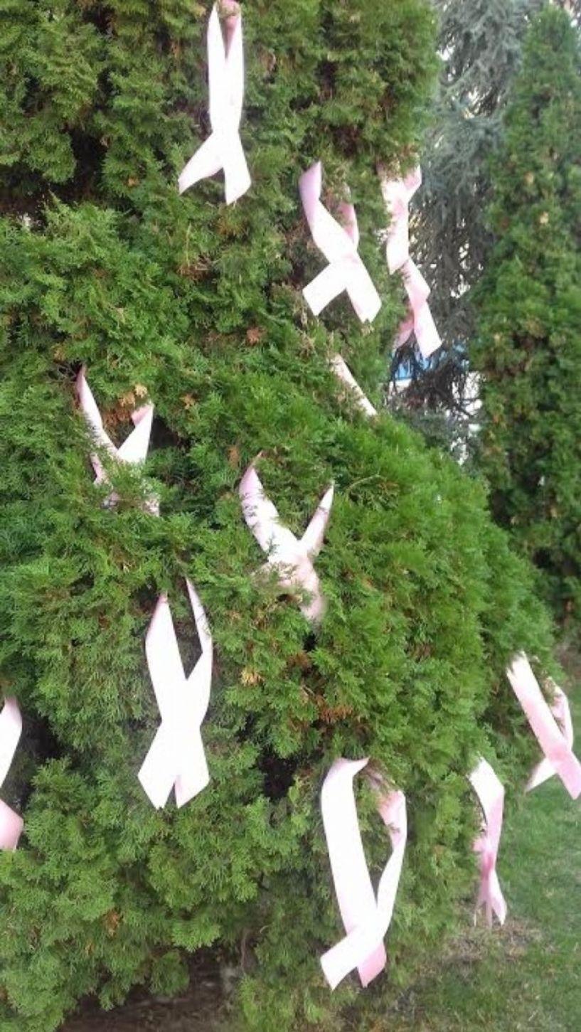 Με ροζ φιόγκους κατά του καρκίνου του μαστού καταστήματα και δημαρχείο στη Βέροια