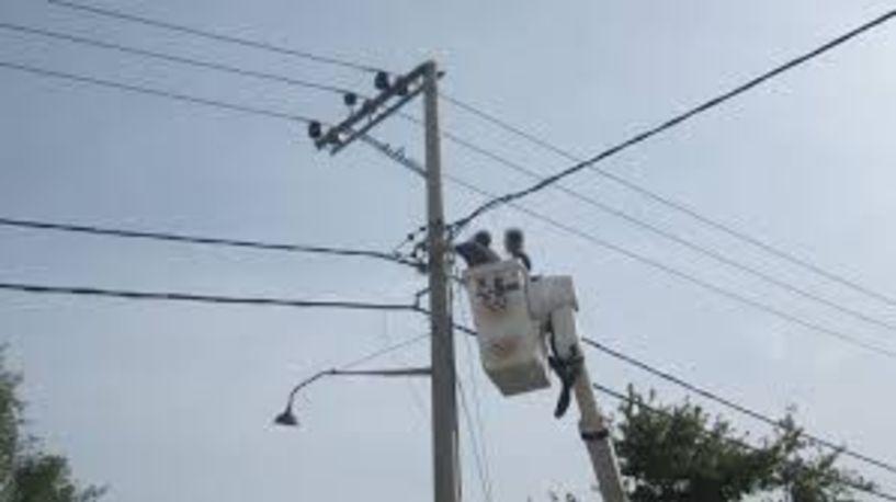 Ένα κουνάβι προκάλεσε τη νυχτερινή διακοπή ρεύματος στη Βέροια