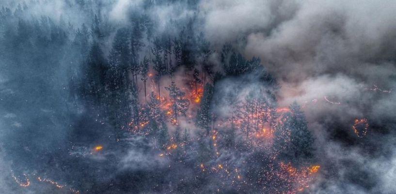 Σιβηρία: 30 εκατ. στρέμματα στις φλόγες!