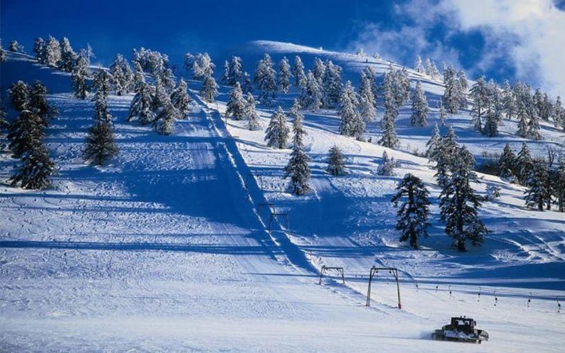 Χιονοδρομικό Κέντρο Βασιλίτσας: Ποια είναι τα νέα μέλη της Επιτροπής Διοίκησης