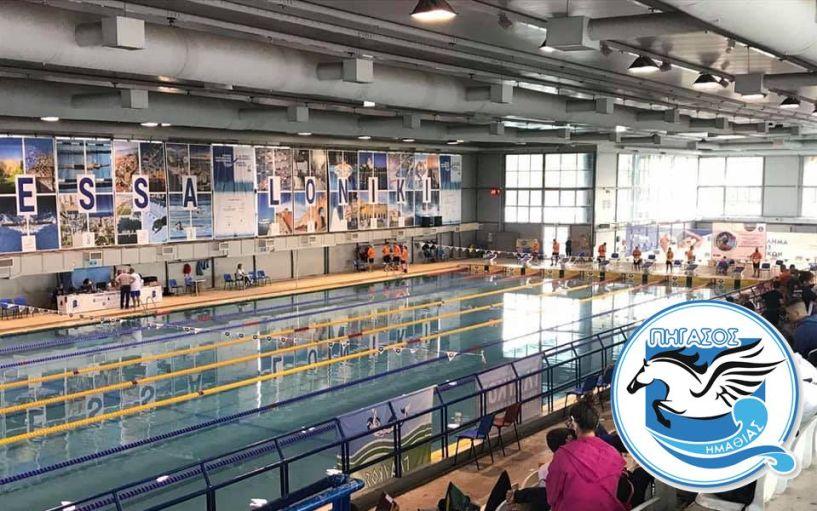 ΠΗΓΑΣΟΣ: Θετικό πρόσημο για την προαγωνιστική ομάδα στους θερινούς αγώνες