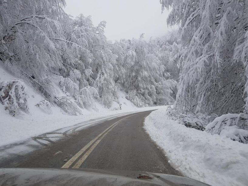 Ευχαριστήριο χιονοδρομικού Σελίου σε Π.Ε. Ημαθίας και δήμο Βέροιας για τους ανοικτούς δρόμους