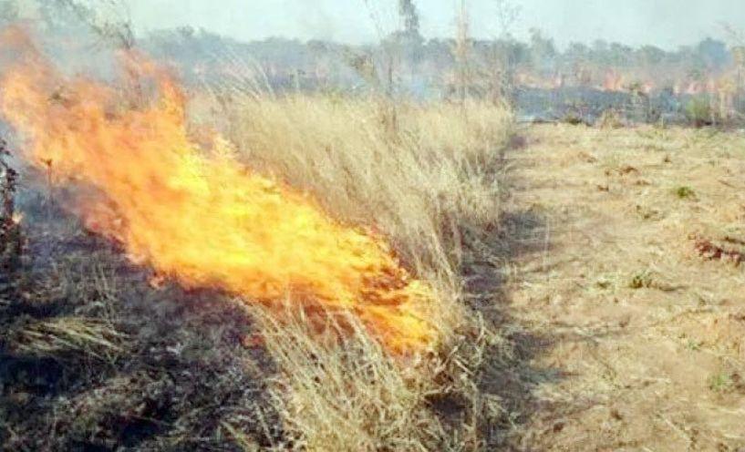 Φωτιά από χόρτα χθες σε περιοχή της Βεργίνας