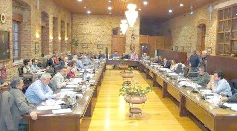 Συζήτηση με εντάσεις στο Δημοτικό Συμβούλιο Βέροιας για τα αδέσποτα