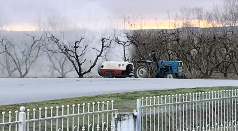 Όταν ραντίζονται δέντρα δίπλα σε αυλές σπιτιών