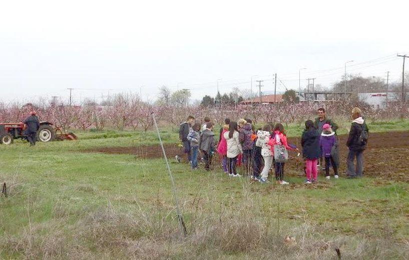 Δράσεις ενημέρωσης μαθητών   για την δενδροκομική έρευνα   από το Τμήμα Φυλλοβόλων   Οπωροφόρων Δένδρων Νάουσας