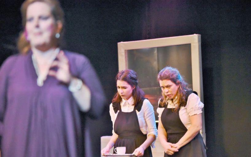«Η Τέχνη του Θεάτρου εκ των έσω!»   21 ομάδες και 370 μαθητές φέτος στα Τμήματα Θεατρικής Υποδομής του ΔΗΠΕΘΕ Βέροιας - Βίντεο