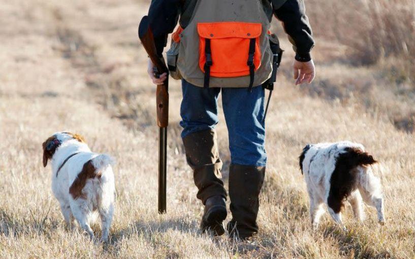 Έναν μήνα νωρίτερα ξεκινάει η έκδοση αδειών κυνηγιού