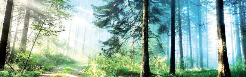 ΠΡΟΚΗΡΥΞΗ  «8ου Αγώνα ορεινού τρεξίματος Ξηρολιβάδου (14χλμ.)»