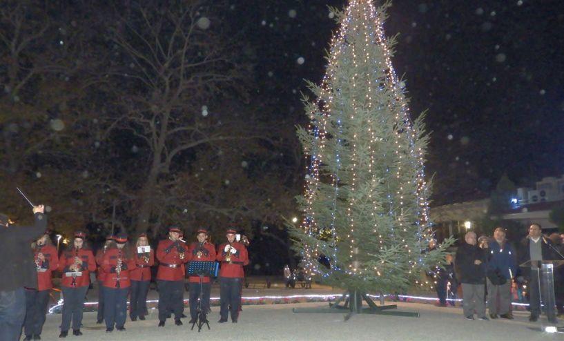Άναψαν τα φώτα του χριστουγεννιάτικου δέντρου στην πλατεία Ελιάς