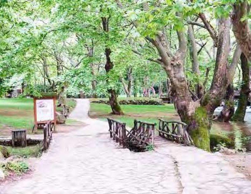 «Ανοίγουν» από Δευτέρα το Άλσος Αγίου Νικολάου και τα πάρκα του Δήμου Νάουσας