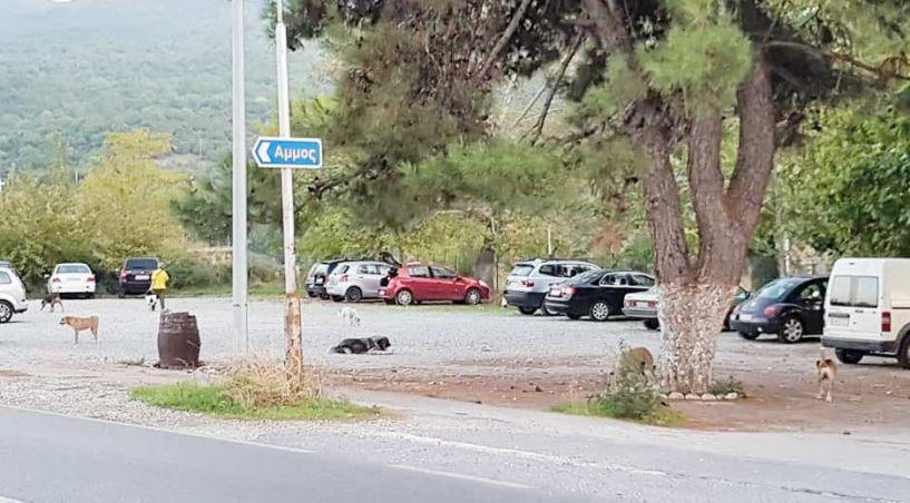 «Σπάζουν» και «αδειάζουν» αυτοκίνητα στο Φράγμα του Αλιάκμονα