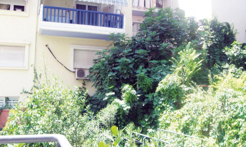 «Σήμα κινδύνου» από κατοίκους για την ανεξέλεγκτη βλάστηση γύρω από τα σπίτια τους
