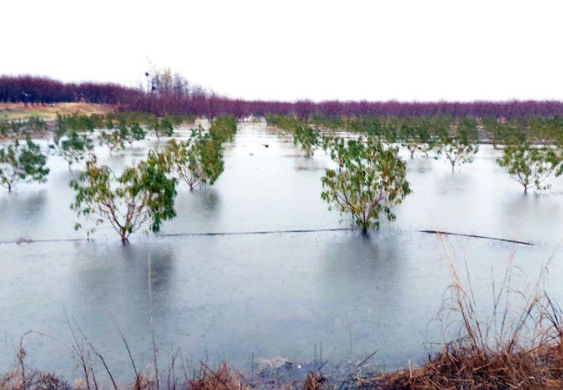 Εκτός από την πολλή βροχή στα χωράφια τους, οι αγρότες περιμένουν  να βρέξει και αποζημιώσεις