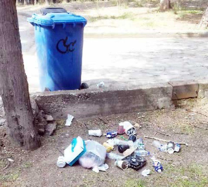 Μια φωτογραφία-χίλιες λέξεις για τα σκουπίδια γύρω από κάδο στο Άλσος Παπάγου Βέροιας