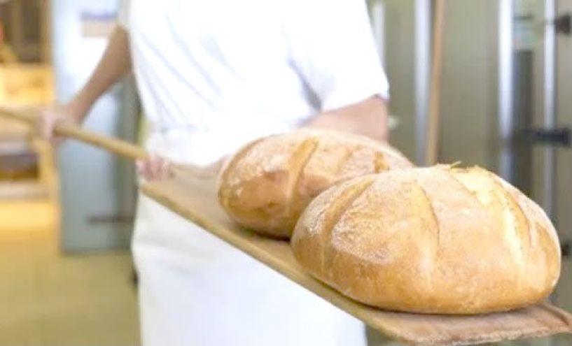 Αλλαγές στην αδειοδότηση των αρτοποιείων, με τις νέες διατάξεις - Αλλαγές στα κριτήρια που ορίζουν τα τετραγωνικά μέτρα που θα πρέπει να έχει ένα αρτοποιείο για να αδειοδοτηθεί φέρνουν διατάξεις του υπουργείου Οικονομίας που περιλαμβάνονται στο πολυνομοσχ
