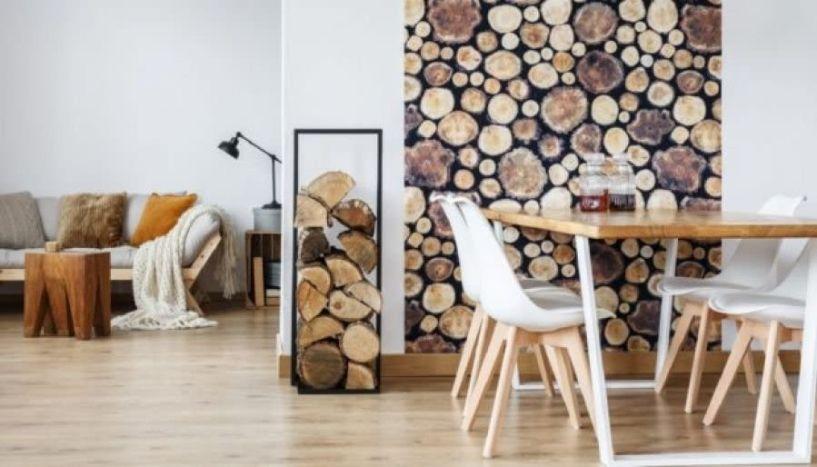 Ο λόγος που δεν πρέπει να αποθηκεύετε τα ξύλα για το τζάκι μέσα στο σπίτι